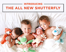 All New Shutterfly